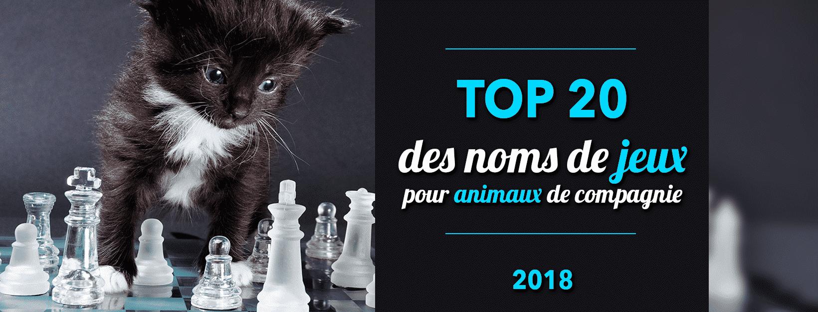 Top 20 noms de jeux pour animaux de compagnie