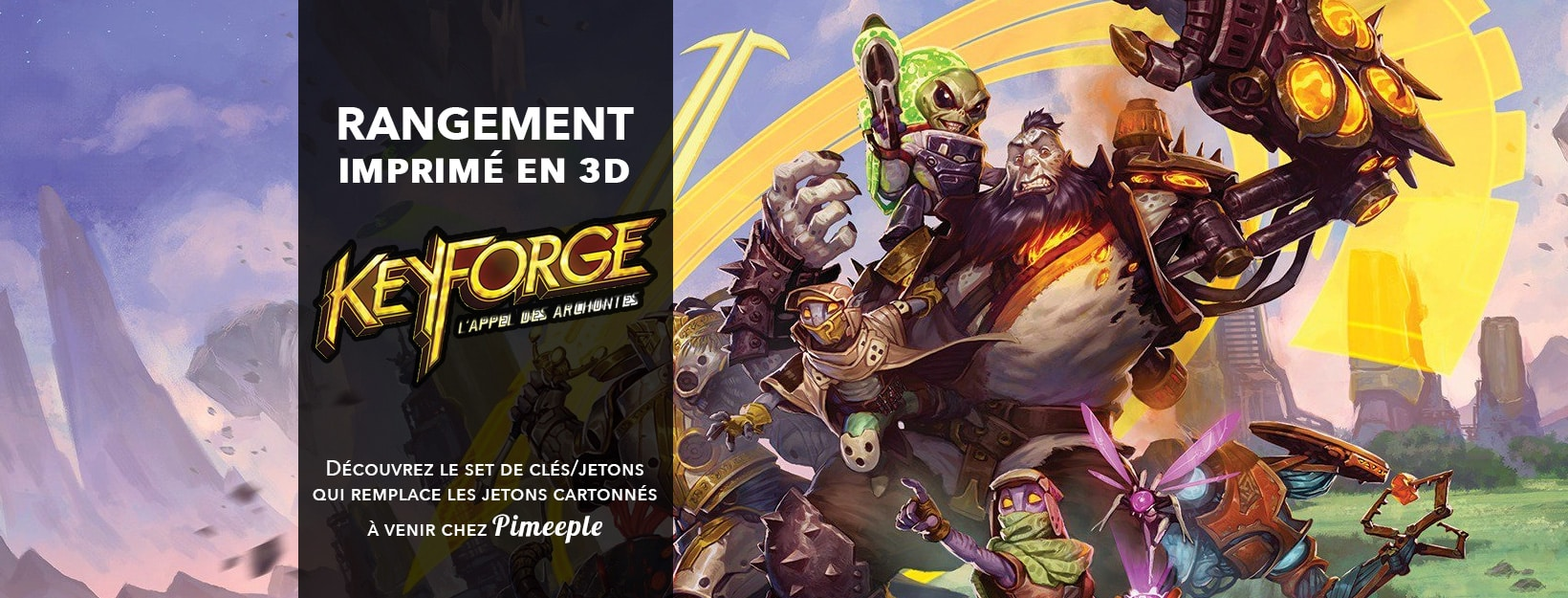 Rangement_3D_insert_keyforge